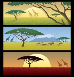 africa landscapes vector image vector image