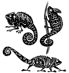 black and white chameleon vector image