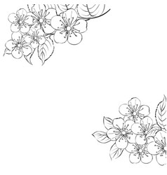 calligraphy cherry blossom cute hand drawn vector image