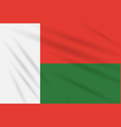 Flag madagascar swaying in wind realistic vector