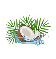 realistic coconut in water splash palm vector image