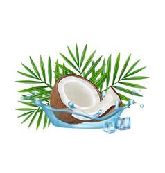 Realistic coconut in water splash palm vector