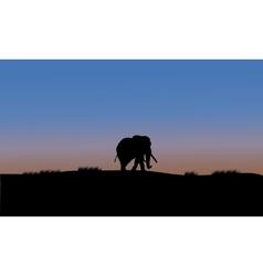 Single elephant silhouette vector