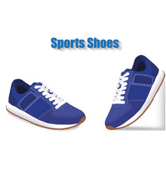 sport shoes on white background vector image