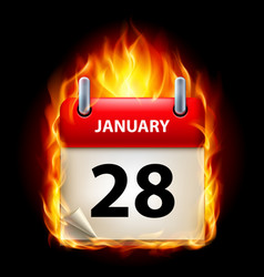 twenty-eighth january in calendar burning icon on vector image