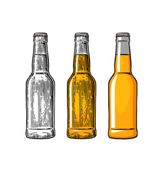 Beer bottle color engraving and flat vector