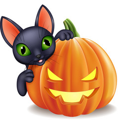 Cartoon black cat holding halloween pumpkin vector