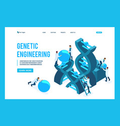 isometric genetic engineering dna structure vector image