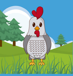 Rooster cute animal in landscape vector