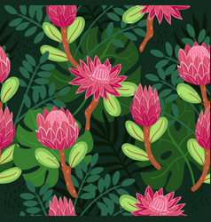 Seamless pattern with protea in doodle style vector