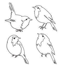 set four robin birds freehand outline vector image