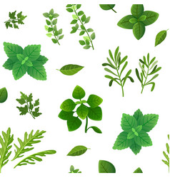 spice seamless pattern food herbs and spices vector image
