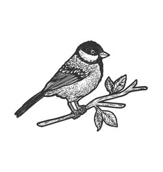 titmouse bird sketch vector image