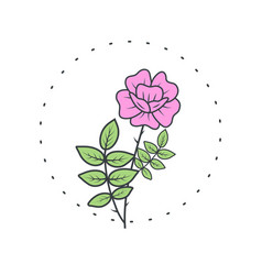 dog-rose flower logo for spa and beauty salon vector image