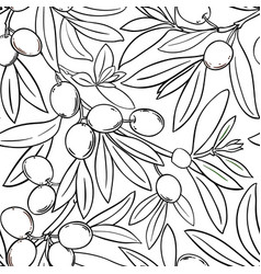 olive branches pattern on white background vector image