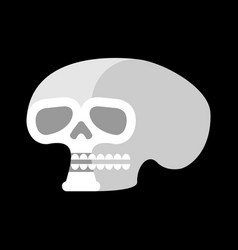 Skull isolated head of human skeleton anatomy vector