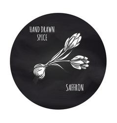 Spice saffron in blackboard round vector