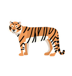 Tiger isolated on white background gorgeous vector
