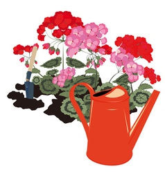 flowers and watering can vector image