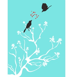birds talk love vector image