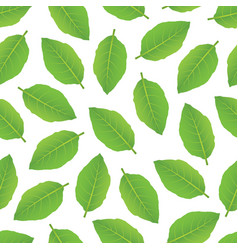 leaves pattern 2 vector image vector image