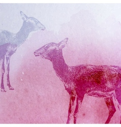 vintage of a watercolor goat or antelope on vector image vector image