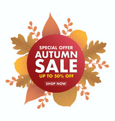 autumn sale icon isolated on white vector image