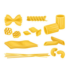 flat set of italian pasta of different vector image