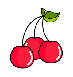 isolated cherry icon vector image