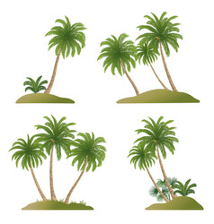 Landscapes with palm trees vector
