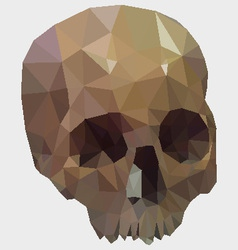 Low Poly Skull vector image