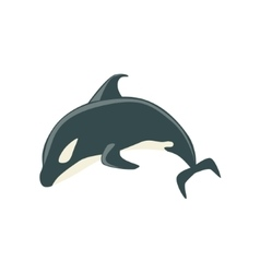 Orca Black And White Arctic Killer Whale Swimming vector