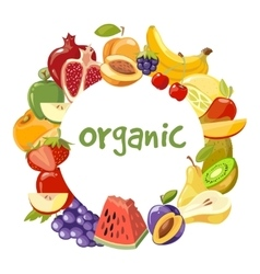 organic fruits frame isolated vector image