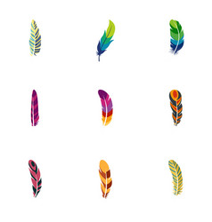 peacock feather icon set flat style vector image