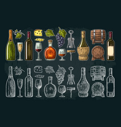 Set drinks made from grapes wine brandy vector