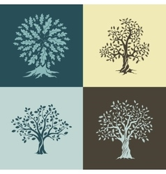 Beautiful oak trees silhouette vector image vector image