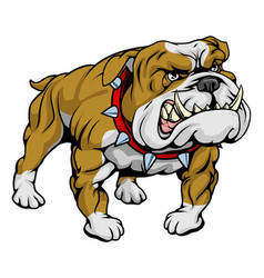 bulldog clipart vector image