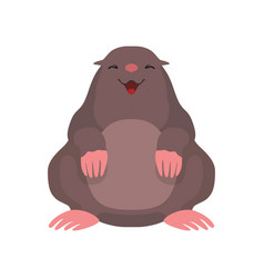 Cute mole lovely animal cartoon character front vector