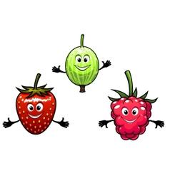 Gooseberry raspberry and strawberry berries vector image