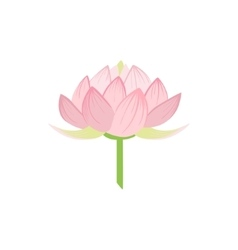 Padma Lotus Sacred Indian Flower vector
