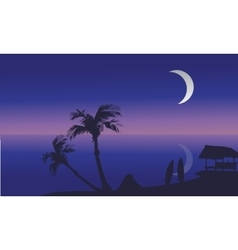 Summer holidays at night scenery silhouette vector image