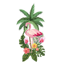 tropical flamingo cartoon vector image