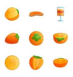 Vegan persimmon icon set cartoon style vector