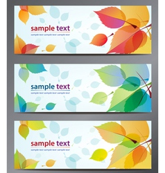 autumn leaves background brochure vector image