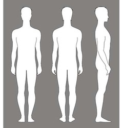 Man figure vector image
