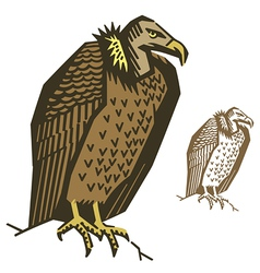 Vulture Bird vector image
