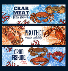 Crustaceans as seafood crab endangered sea animal vector