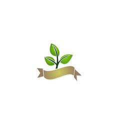organic green leaf plant logo vector image