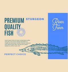 Premium quality sturgeon abstract fish vector