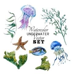 Marine set of Watercolor Tropical Fish vector image vector image